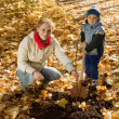 Woman and boy  planting  tree in autumn -  