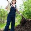 Farmer works with manure - Foto Stock