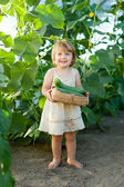2 years child picking cucumbers — Stock Photo