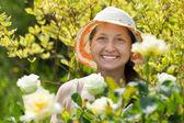 Mature female florists — Stock Photo