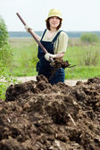 Farmer spreads manure at field — Stock Photo