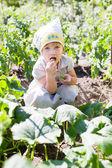 Baby girl eats cucumbers — Stock Photo