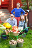 Family with vegetables harvest — Stock Photo