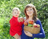 Family with apples in orchard — Stock Photo