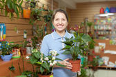 Happy woman in flower store — Stock Photo