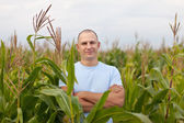 Agriculturist in field of corn — Stock Photo