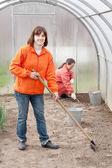 Kvinnor jobbar i växthus — Stockfoto