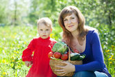 Happy famile with vegetables harvest — Stock Photo