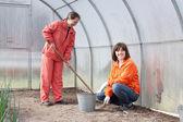 Женщин работает на парниковых — Стоковое фото
