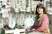 Jardinero hembra escoge las coles — Foto de Stock