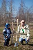 Mujer y niño plantando árboles — Foto de Stock