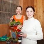 Women with seedlings — Stock Photo