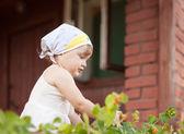 若い庭師の庭での作業 — ストック写真