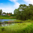 Rural landscape with pond — Stock Photo #24183289