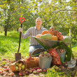 Happy man with vegetables harvest - Stock Photo