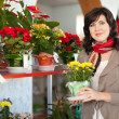Woman in flower shop — Stock Photo #24183431