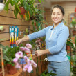Female florist with Kalanchoe — Stock Photo #24183813