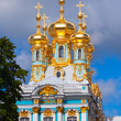 Part of  Catherine Palace — Stock Photo