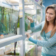 Stock Photo: Womnear aquariums in petshop