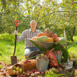 Man with vegetables harvest in garden - Stock Photo