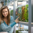 Woman chooses aquarium — Stock Photo