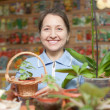 Stock Photo: Womin garden shop