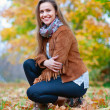 Beauty girl in autumn park - Stock Photo