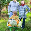 Happy  family with harvest  — Stock Photo