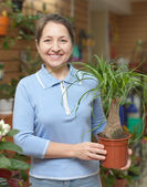 Happy mature woman with Nolina in pot — Foto Stock