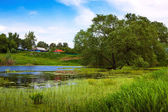 Rural landscape with pond — Stock Photo