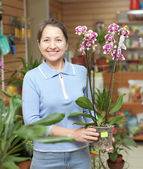 Woman chooses Phalaenopsis at flower shop — Stock Photo