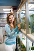 Woman chooses fish in tank — ストック写真