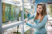 Woman near aquariums in petshop — Stockfoto