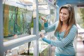 Vrouw in de buurt van aquaria in petshop — Stockfoto
