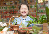 Woman in garden shop — Stock Photo