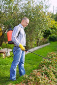 Man works with garden spray — Stock Photo
