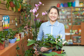 Woman with orchid at flower store — Stock Photo