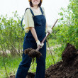 Farmer works with manure — Foto Stock