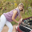 Womtrying to fix car — Stock Photo #25914193