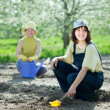 Two women sows seeds — Stock Photo