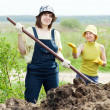 Women works with manure at field — Foto de stock #25916681