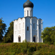 Church of the Intercession on the River Nerl — Stock Photo #25916683