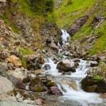 Mountains stream — Stock Photo #25918351
