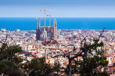 Top view with Sagrada Familia — Stockfoto