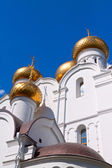 Domes of Assumption cathedral at Yaroslavl — Stock Photo