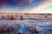 Rural wintry landscape — Fotografia Stock
