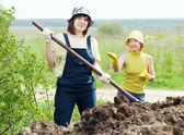 Women works with manure at field — Stock Photo