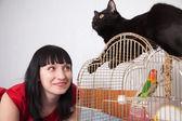 Donna con gatto e pappagallo — Foto Stock