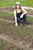 Woman working at onion plant — Stock Photo