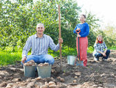 Family with harvested potatoes in field — Stock Photo